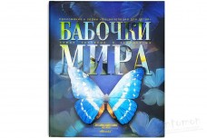 Бабочки мира - Каабак Л.В., Сочивко А.