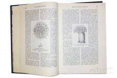 Жизнь животных (в трех томах). Том 1. Млекопитающие. Том 2. Птицы. Том 3. Пресмыкающиеся - Брем А.Э.