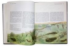Возникновение человека (в 5-и томах)