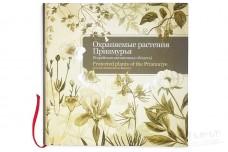 Охраняемые растения Приамурья - Рубцова Т.А., Фетисов Д.М.