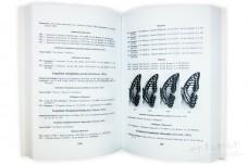 Каталог коллекции чешуекрылых (Lepidoptera). Часть 2 - Королёв В.А.