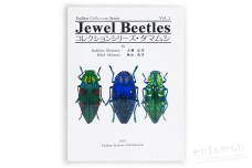 Jewel Beetles. Vol. 2. Endless Collection Series