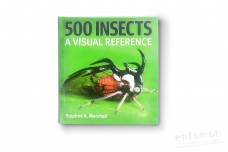 500 Insects. A visual reference