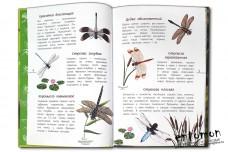 Наши насекомые. Определитель для детей - Полевод В.А.