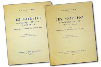 Les Morpho D'Amerique du sud et centrale