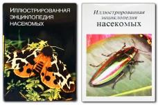 Иллюстрированная энциклопедия насекомых - Станек В.Я.