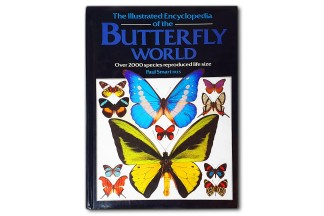 The Illustrared Encyclopedia of the Butterfly World - Paul Smart Fres