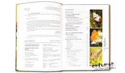 Бабочки средней полосы России: Дневные и ночные - Алексеев В.Н., Бабенко В. Г.