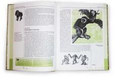 Жизнь животных. Самая важная и интересная информация - Брем А.Э., Коблик Е.А., Дунаев Е.А.