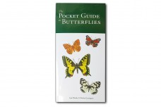 The Pocket Guide to Butterflies - Whalley P.