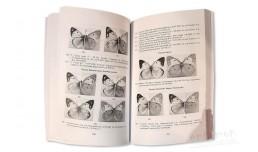 Каталог коллекции чешуекрылых (Lepidoptera). Часть 3 - Королёв В.А.