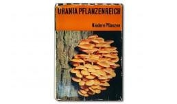 Urania Pflanzenreich. Niedere Pflanzen - Erich Heinz