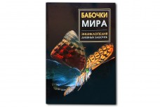 Бабочки мира. Энциклопедия дневных бабочек - Раделов С. Ю.