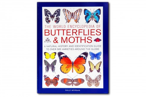 The world encyclopedia of Butterflies & Months - Sally Morgan