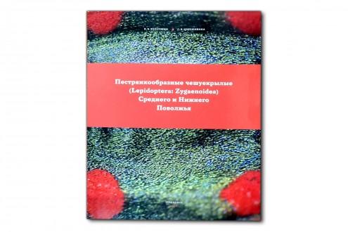 Пестрянкообразные (Lepidoptera: Zygaenoidea) Среднего и нижнего Поволжья - Золотухин В.В.