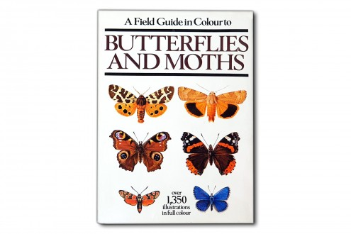A Field Guide in Colour Butterflies and Moths - Ivo Novak