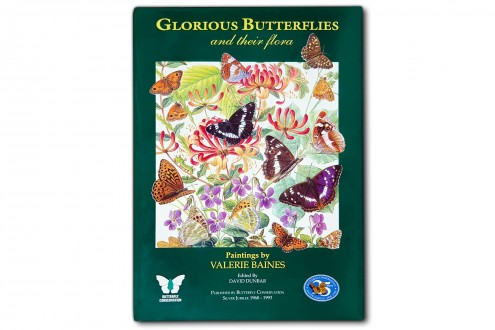Glorious Butterflies and their flora - Valerie Baines