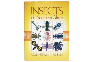 Insects of Southern Africa - Clarke H. Scholtz, Erik Holm