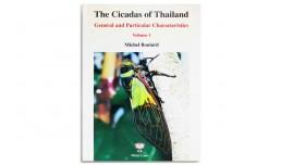The Cicadas of Thailand - Michel Boulard