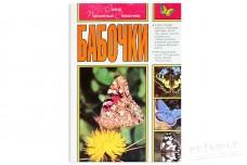Бабочки. Самый популярный справочник - Штайнбах Г.