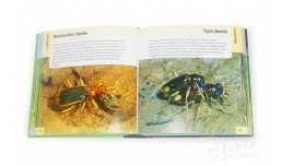 500 Insects. A visual reference - Stephen A. Marshall